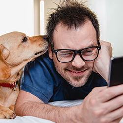 Man looking at smartphone with dog