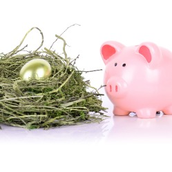 Piggy bank next to nest and egg